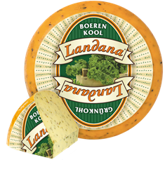 Landana kale cheese